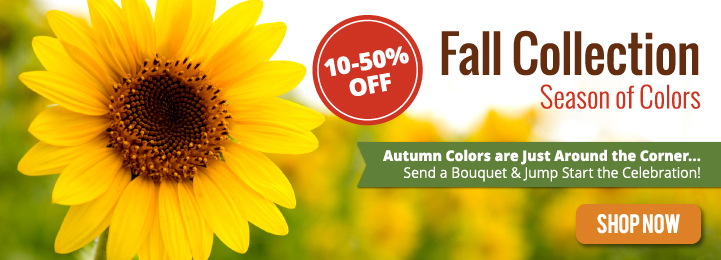 Celebrate Everyday Fall Occasions with Blooms Today!